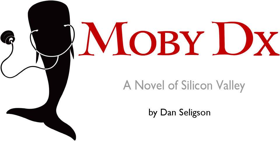 Silicon Valley Novel
